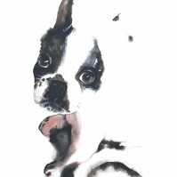 Original Watercolour Painting, Puppy, French Bulldog, Pet Portrait