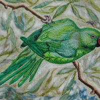 'Parakeet'  Limited edition print