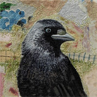 'Jackdaw' Limited Edition Print