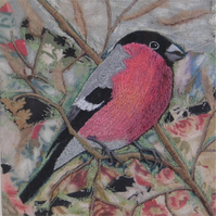'Bullfinch' Limited Edition Print