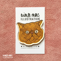Recycled Acrylic Orange Cat Pin Brooch