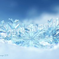 Ice Crown - Abstract Photographic Print