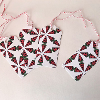 Set of 4 Water Melon Gift Tags - Eco-Friendly