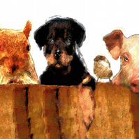 "Animals ""Peering over the Fence"" Birthday Card"