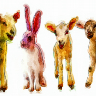 Odd One Out, Lambs, Sheep and Hare Birthday Card