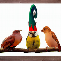 Christmas Card, Birds on a Twig, Look at that Hat
