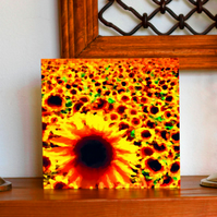 Field of Sunflowers, Greetings Card