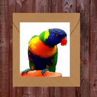 Parrot Father's Day Card