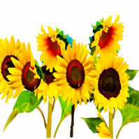 Sunflowers Birthday Card