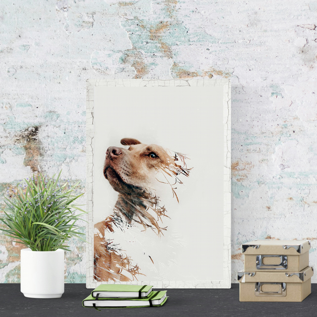 Abstract Pet Portrait Dog Portrait Contemporary Custom Pet