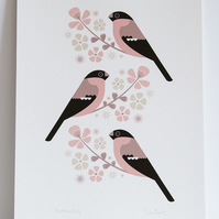 A4 Bullfinches & Cherry Blossom - Signed Open Edition Giclee Print