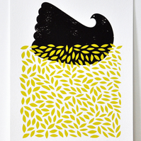 A4 Black Dove - Signed Open Edition Giclee Print