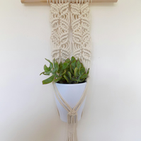 Macrame Plant Hanger - Indoors or Outdoors