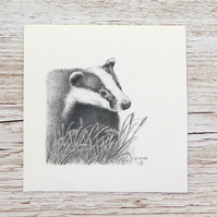 Original Pencil Drawing - Badger 1