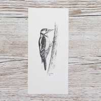 Original Pencil Drawing - Greater Spotted Woodpecker