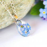 Pressed forget me not flower terrarium necklace, romantic true love gift for her