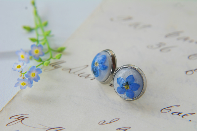 minimalist stainless steel stud earrings with real forget me not flowers