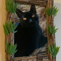 Green Spring Picture Frame made from fern stems and artificial grass.
