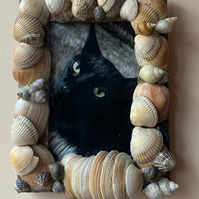 Sand Dunes Picture Frame made from sea shells and beach sand.