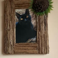 Wild Forest Flower Picture Frame, made from from pine cone and fern stems.