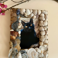Ocean Rainbow Picture Frame made from sea shells and beach sand.