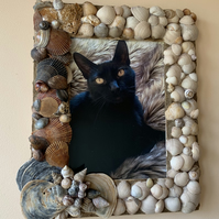 Ocean Storm Picture Frame made from sea shells and beach sand.