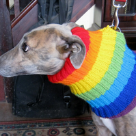 "Dog snood or neckwarmer in rainbow stripes neck 14"" to 18"", length 12"""