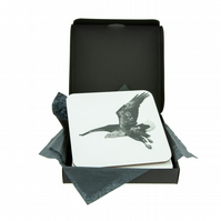 White Tailed Sea Eagle Coaster - FREE UK DELIVERY - Sea Eagle in Black and White