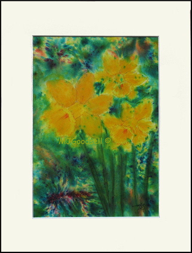 Daffodils  (B4-19) - an Original Watercolour painting