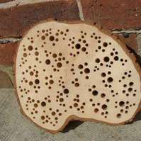 Bee Hotel Unique Seasoned Tree Slab