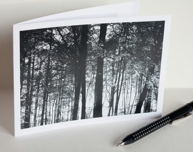 Pack of 4 photographic blank greetings cards - Thetford Forest