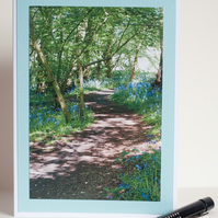 Photographic blank greetings card - Bluebells along a woodland path