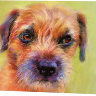 Greetings Card - blank - 'Border Terrier'