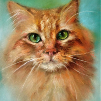 Greetings Card - Note Card - Ginger Cat  - blank