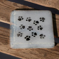 Fused Glass Paw Print Coasters