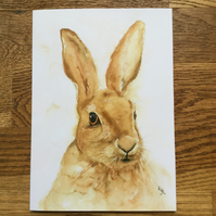 Free UK post  - A5 blank card of Harlyn Hare