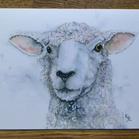 Free UK postage A5 blank card from original watercolour  of Samphire Sheep.