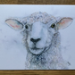 A5 blank card from original water of Samphire Sheep. Free UK postage