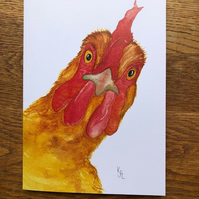 Free UK postage - A5 blank card of Crooklets Chook -