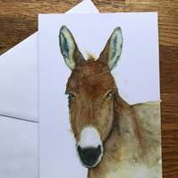 A5 blank card of Delabole Donkey - Free UK postage