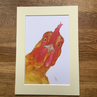 A4 mounted print of my original watercolour of Crooklets Chook