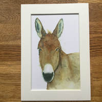 A4 mounted print of Delabole Donkey from my original watercolour