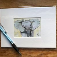 'Errol Elephant' Mounted print of miniature watercolour - FREE UK POST