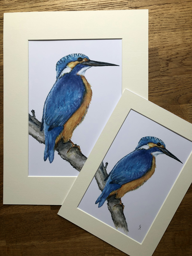 A4 or A3 mounted print of Kynance Kingfisher from my original watercolour