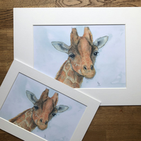 A4 or A3 mounted print of Gideon Giraffe from original watercolour