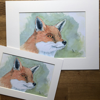 A4 or A3 mounted print of Freathy Fox from my original watercolour