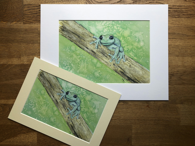 A4 or A3 mounted print of Travis Tree Frog from original watercolour