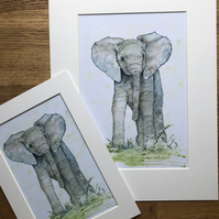 A4 or A3 mounted print of Elmo Elephant from original watercolour