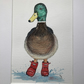 Original watercolour of Duck in Boots - FREE POSTAGE