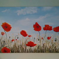 SOLD,   acrylic paint painting art artwork artist poppy poppies flower floral